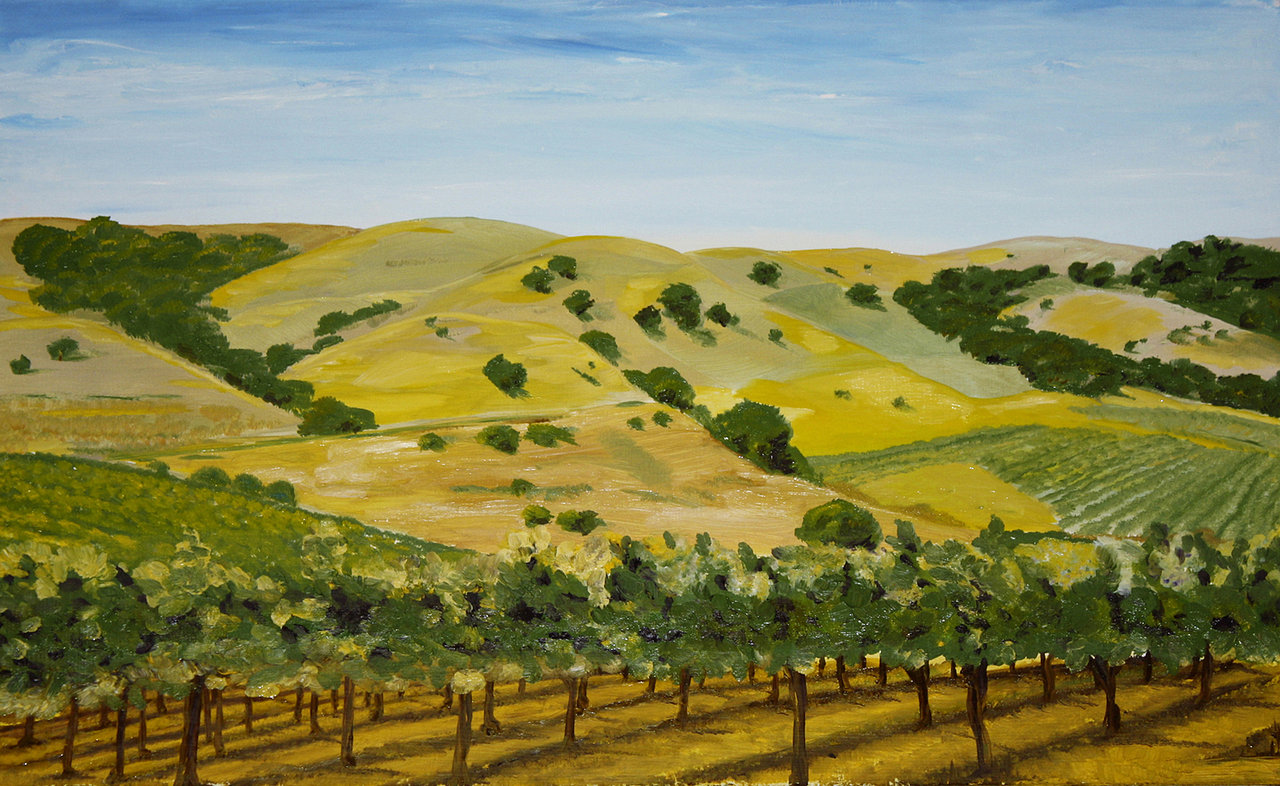Paso+Robles+Vineyard.jpg