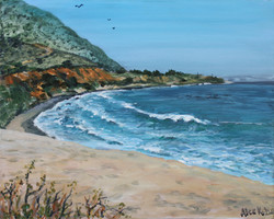 Carpenteria Cove