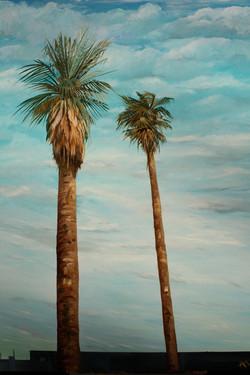 Two Palms.JPG
