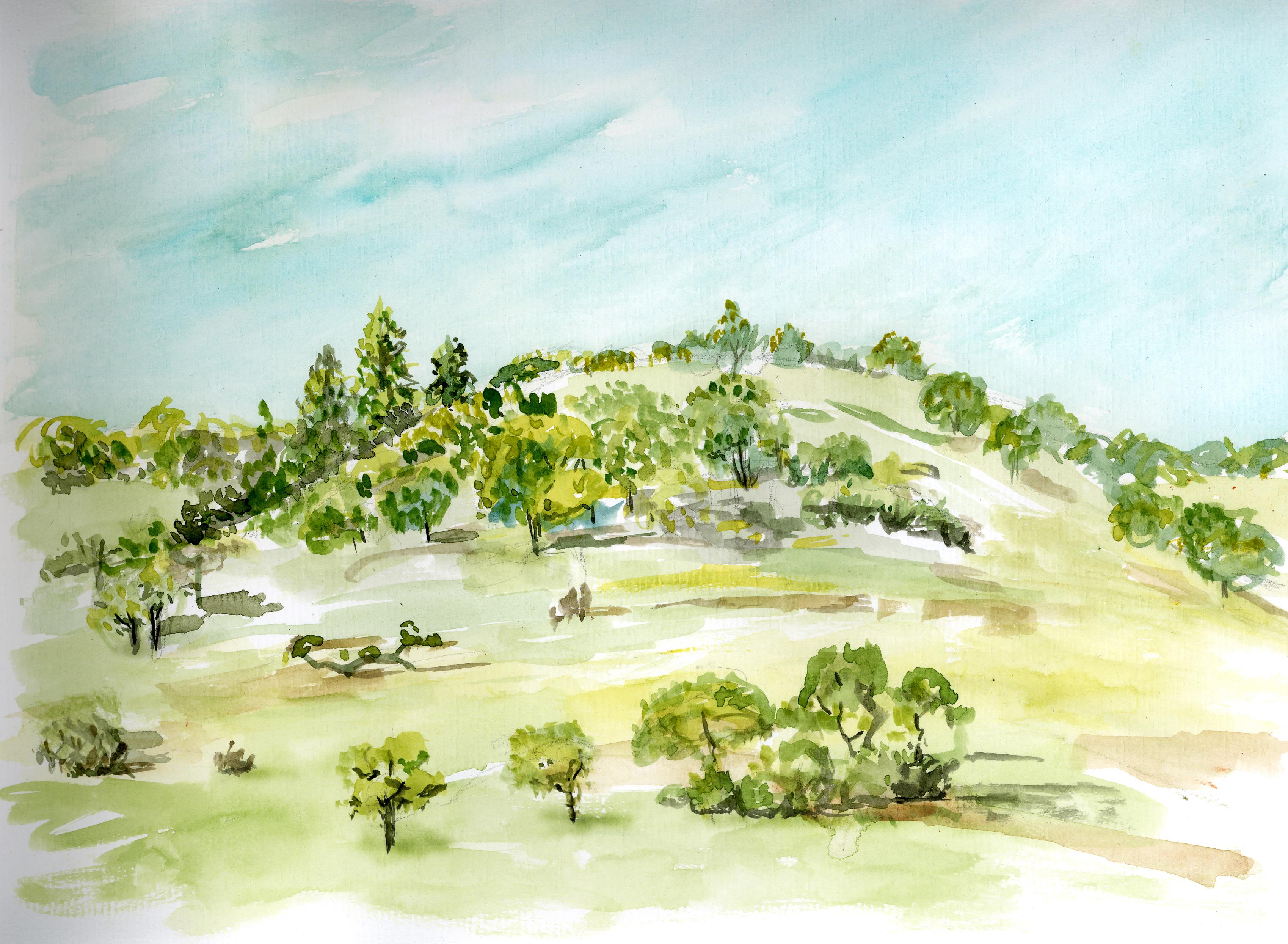 Bidwell Hill