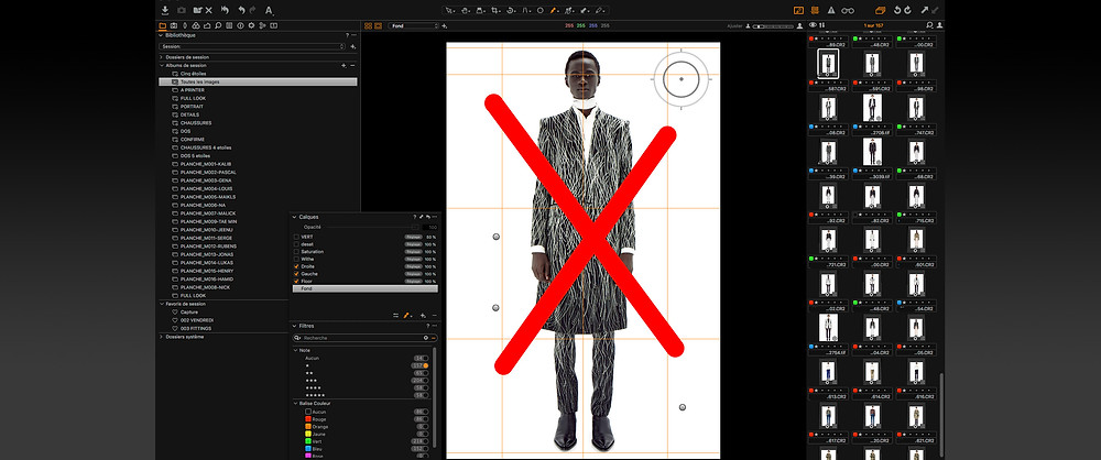 L'interface de Capture One, optimisée pour un affichage rapide des sélections.