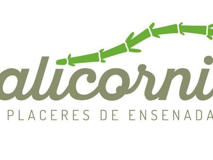 Salicornia hoy 28 dic abierto hasta las 7PM