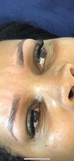 Eyelash and Brows