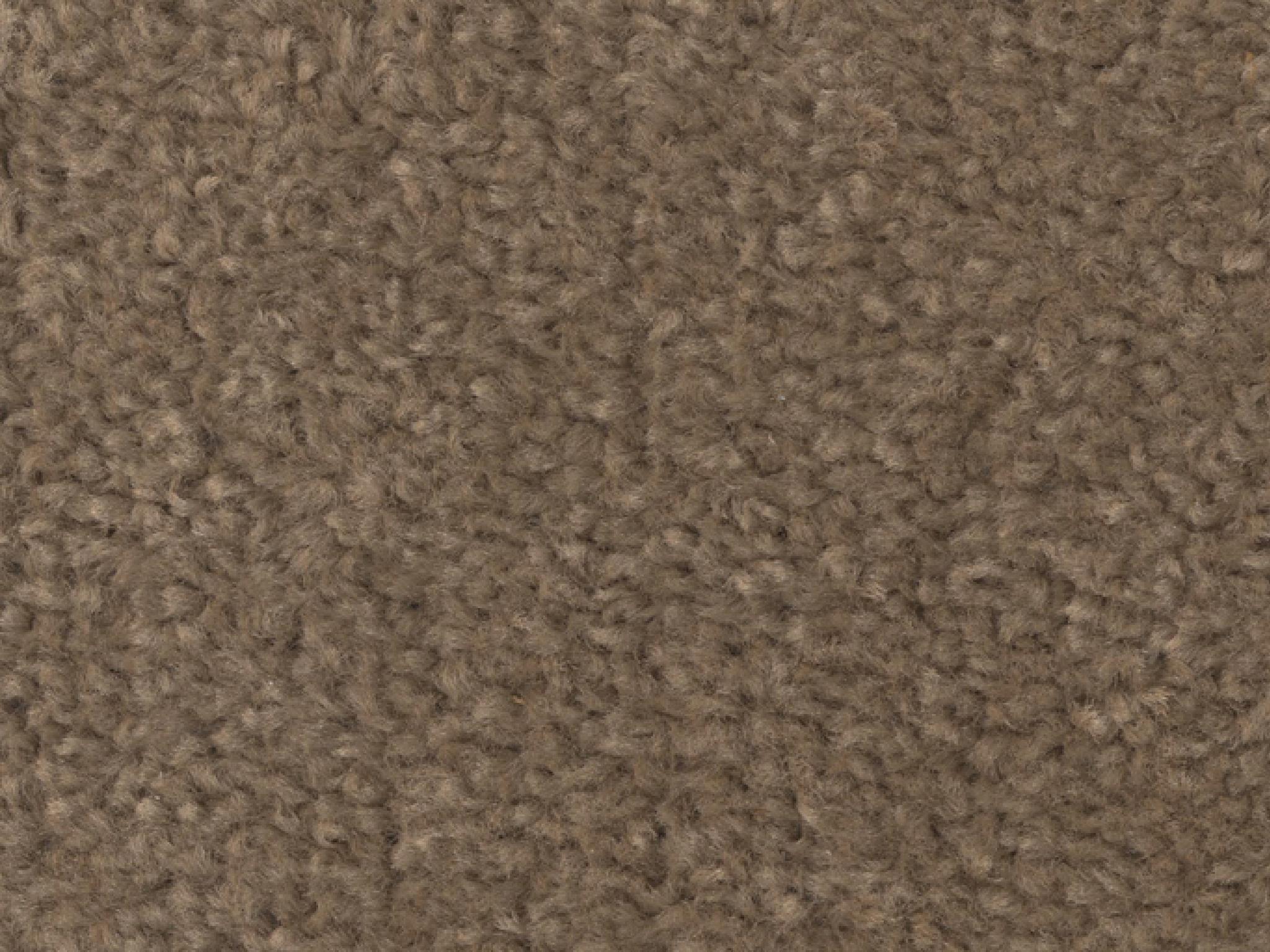 MAY_Decor_Carpet_Etching