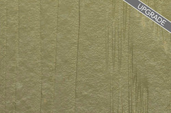 ForestMeadow_Cemplank_Siding_upgrade_web