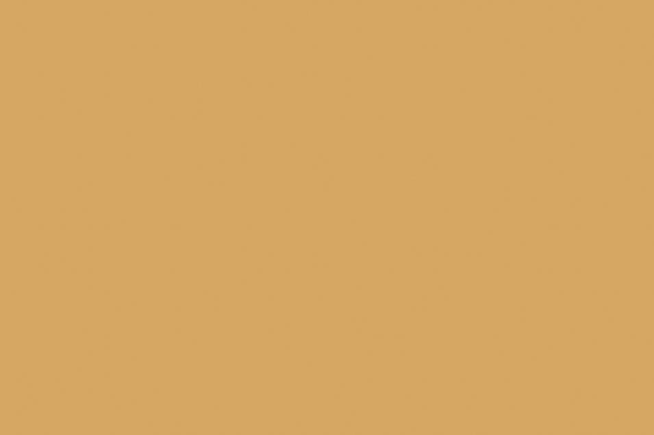 Rut_TuscanTan_Paint_Web-955x636