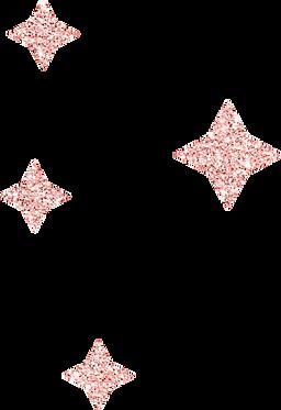 SB_Sparkle_Glitter Pink 01_300 dpi.png