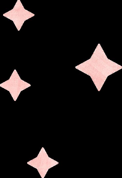 SB_Sparkle_Metallic Pink 01_300 dpi.png