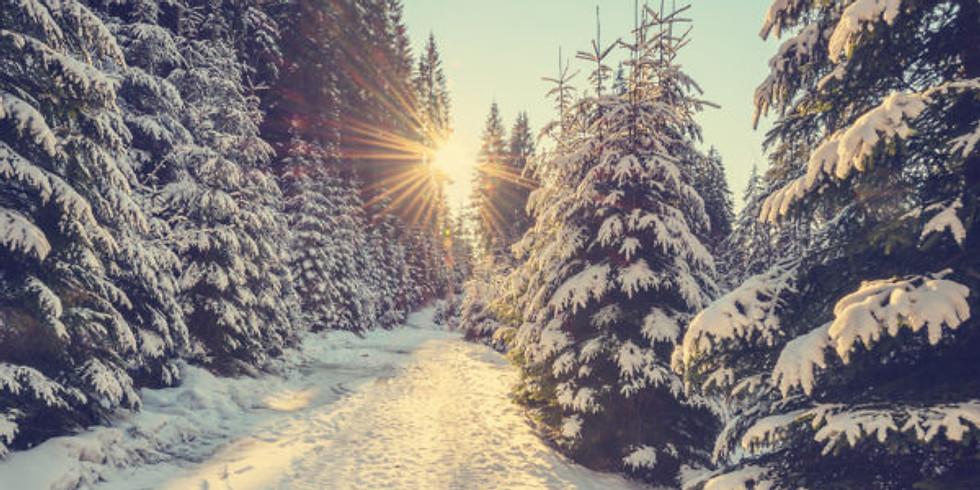 Winter Solstice Ritual