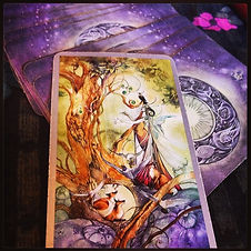 Queen of Wands- follow your dreams, your