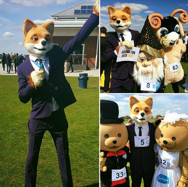 Foxy Bingo Sue Ryder Cup.jpg
