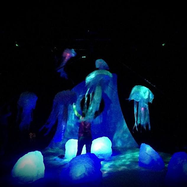 Airquarium Jellyfish.jpg