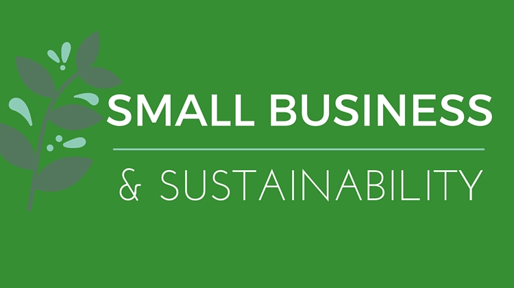 small-business-sustainability