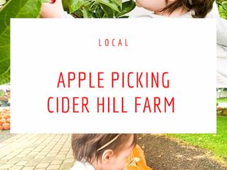 Explore Local: Apple Picking - Cider Hill Farm