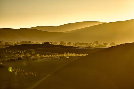 Dunes-2_1.jpg