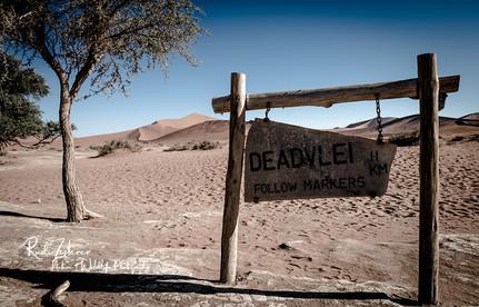 Deadvlei-11.jpg