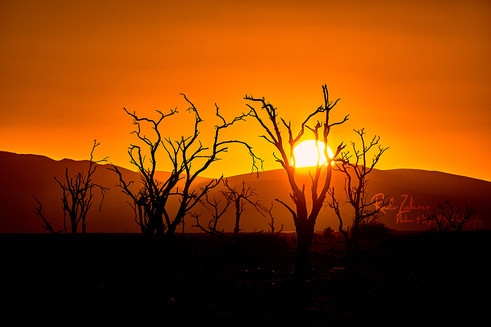 Sunset-Desert.jpg