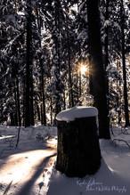 Winter-15-sw (1 von 1).jpg