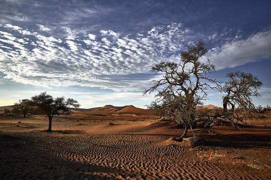 Dunes-3.jpg