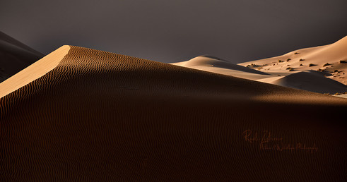 Dunes-1_1.jpg