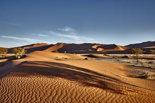 Dunes-8.jpg