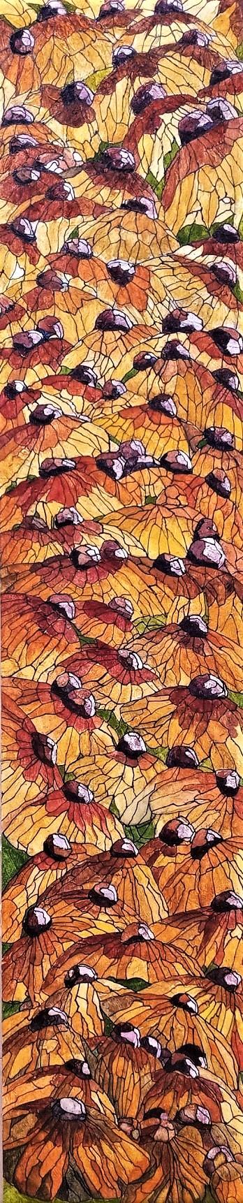 Bosquet de Rudbeckia Hirta (2020)