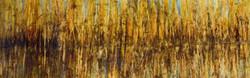 Reflets du marais (2017)