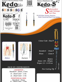 kedo s2 details.jpg