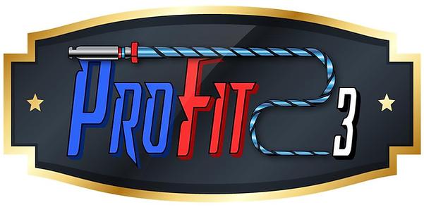 profit-logo png.png