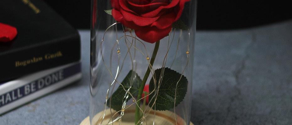 रोज़ एलईडी लाइट्स आपके दिल-वेलेंटाइन की मातृ दिवस, नए साल के उपहार को रोशन करती हैं