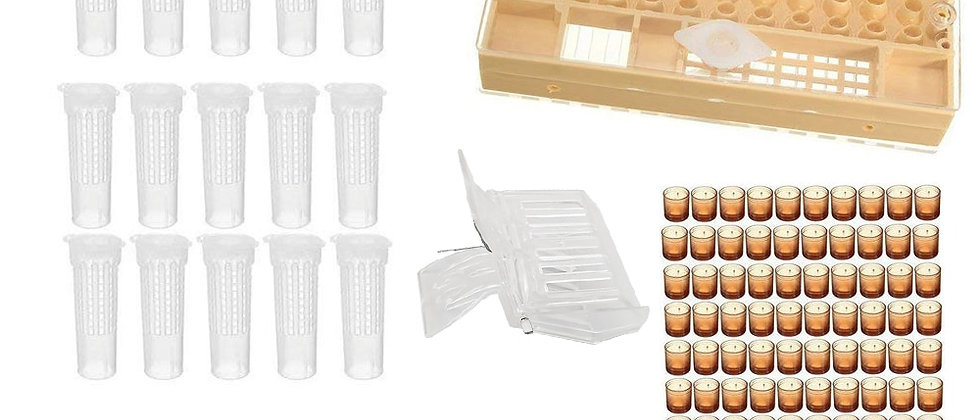 Complete Queen Rearing System Kit King Cultivating Box Plastic Bee Bees Cells