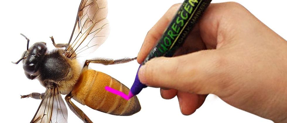 1Pc Queen Bee Marker Pen Bees Honeybee Marking Highlighter Beekeeping Supplies