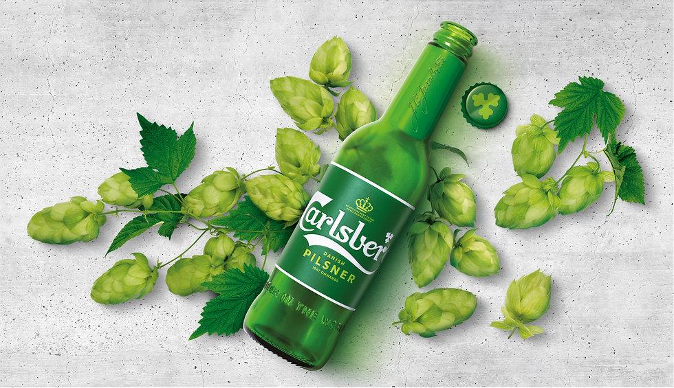 Bottle cap hops with backdrop.jpg