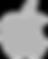 apple-logo-png-5a3a5b3b8881d5_edited.png