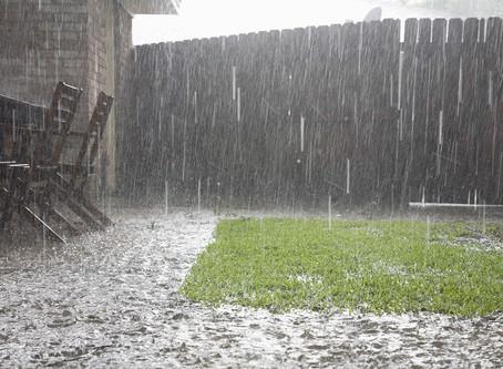 A ContiGrass az esővíz, a talajvíz és a csatorna szemszögéből