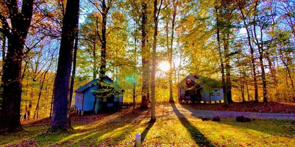 Peace in the Wild Cabin
