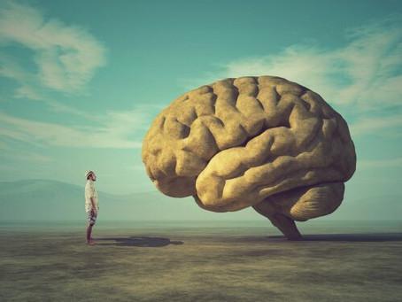 Il valore dell'empatia e il fallimento della razionalità.