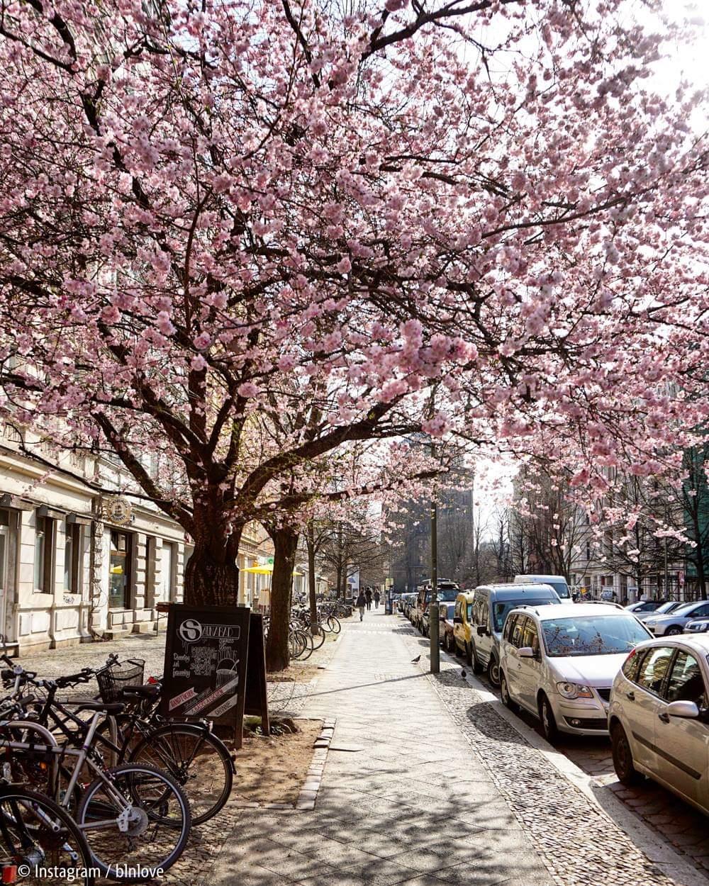 Весна в Берлине
