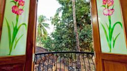 View mango tree