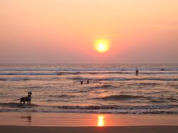 Mandrem sunset закат в Мандреме