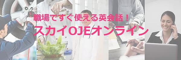スカイOJEオンライン_大.png