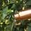Thumbnail: Forrest&Love waterfles gegraveerd