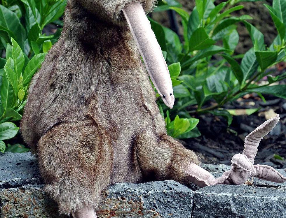 Kiwi Rewi (large) Kitset