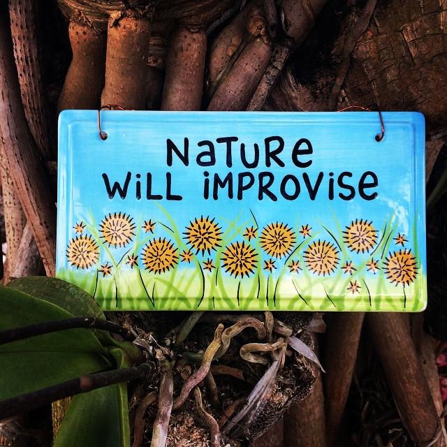 Nature Will Improvise
