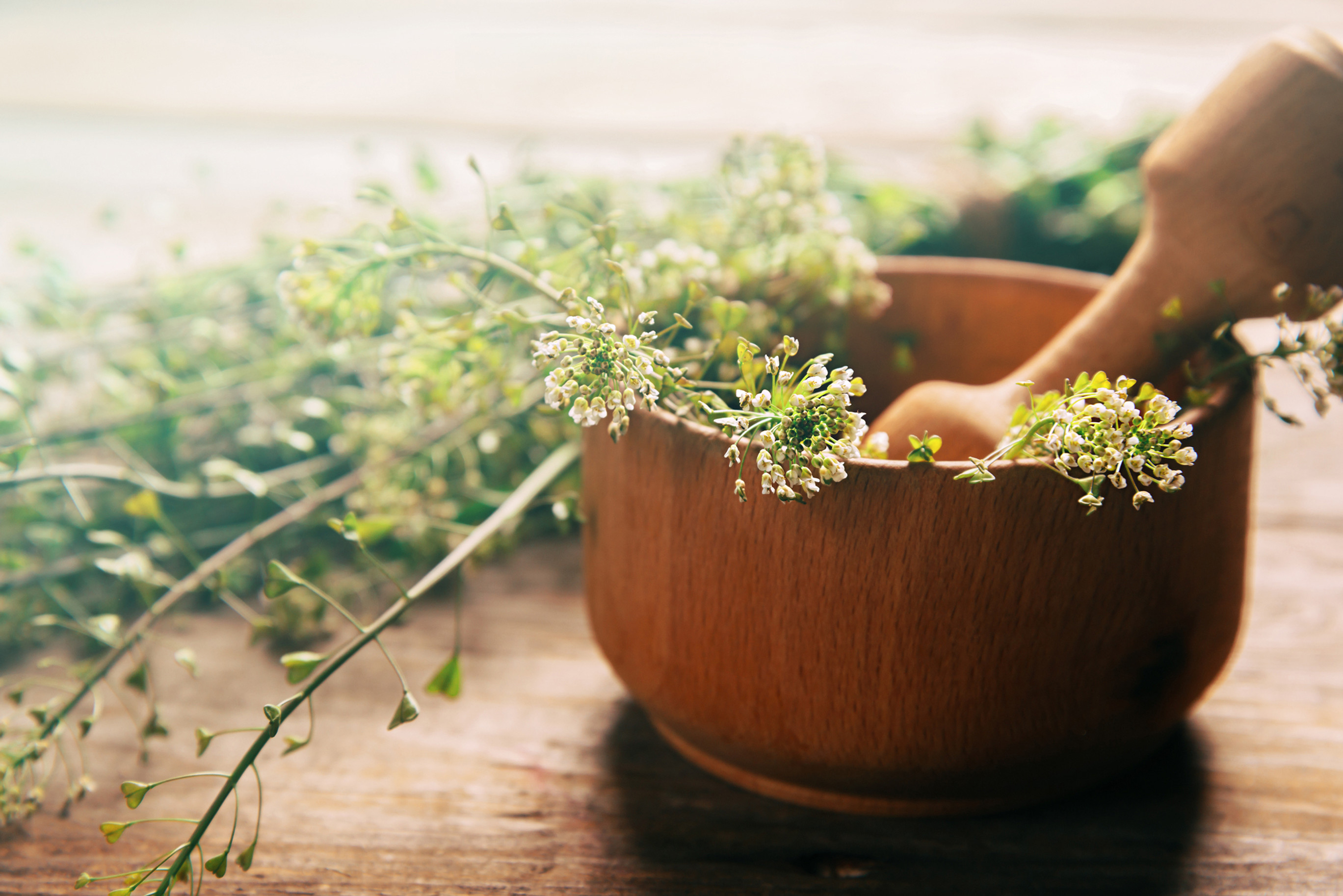 Naturopathic Nutrition Assessment