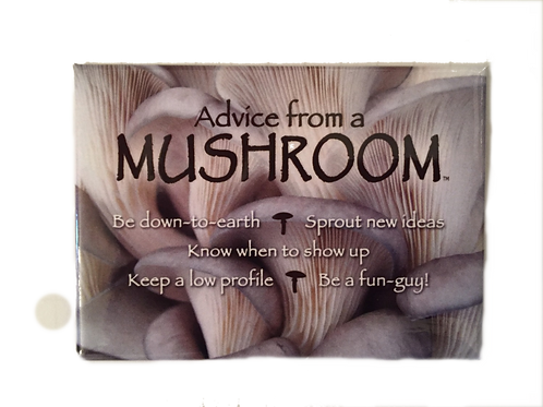 Advise from a Mushroom Magnet