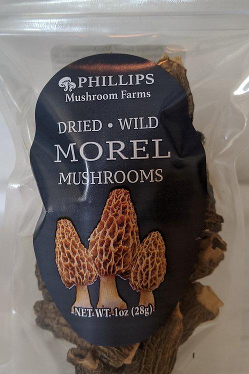 Dried Morel Mushrooms