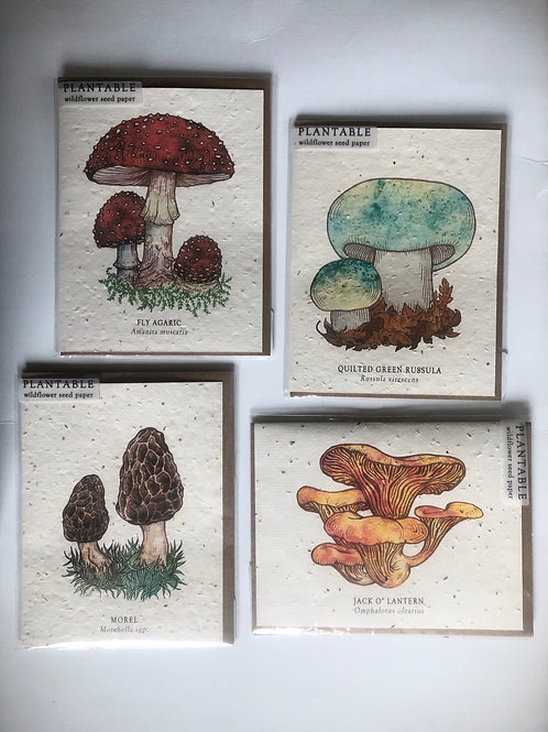 Mushroom cards made from plantable seeds