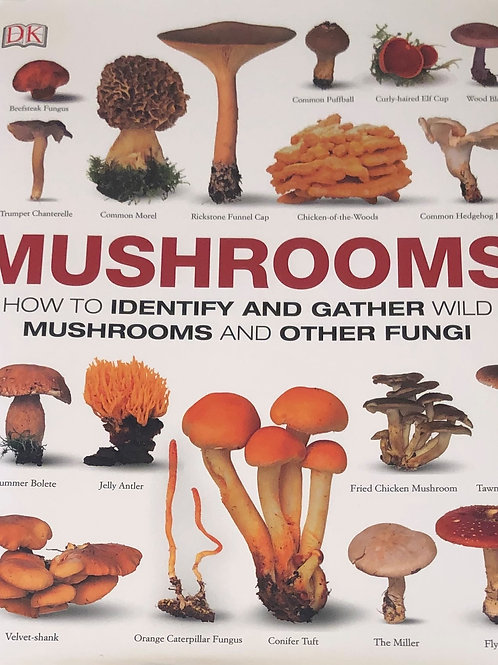 Mushrooms How to Identify and Gather Wild Mushrooms