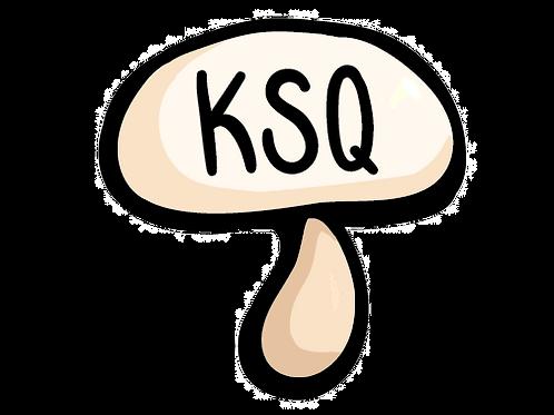 KSQ Mushroom Car Magnet